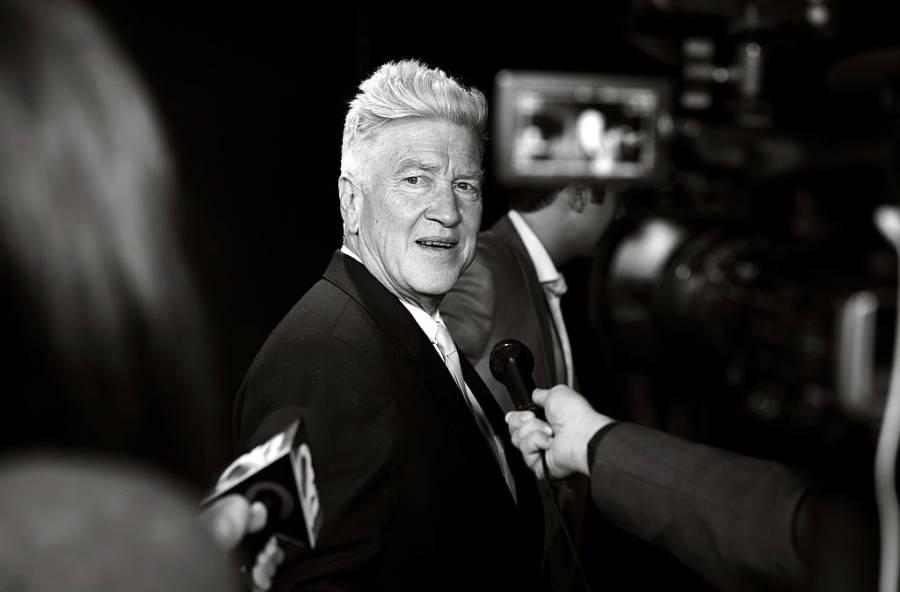 Fancy Lynch