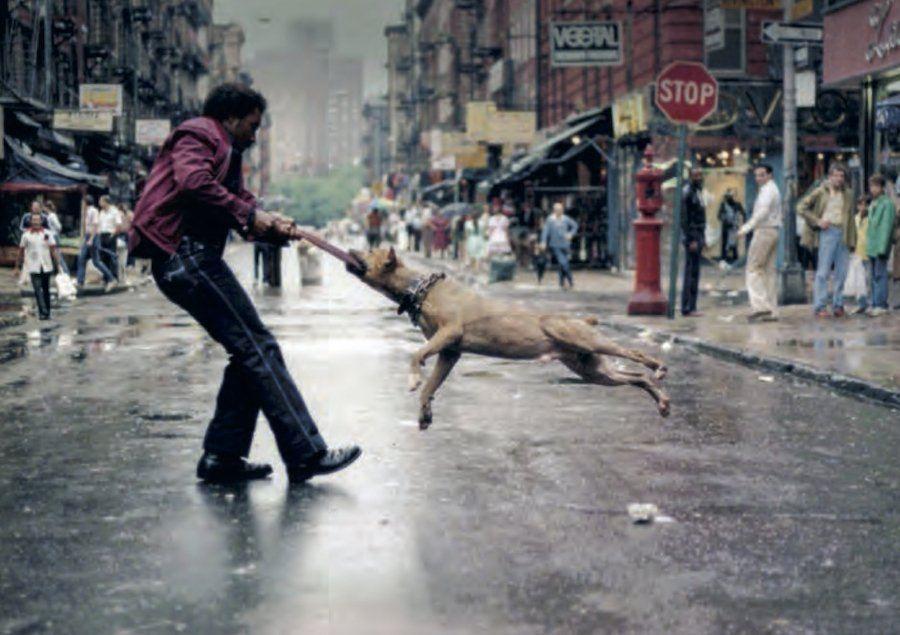 Jamel Shabazz Dog Owner