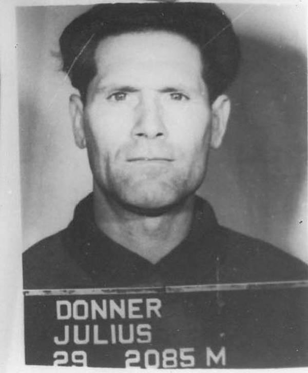 Julius Donner