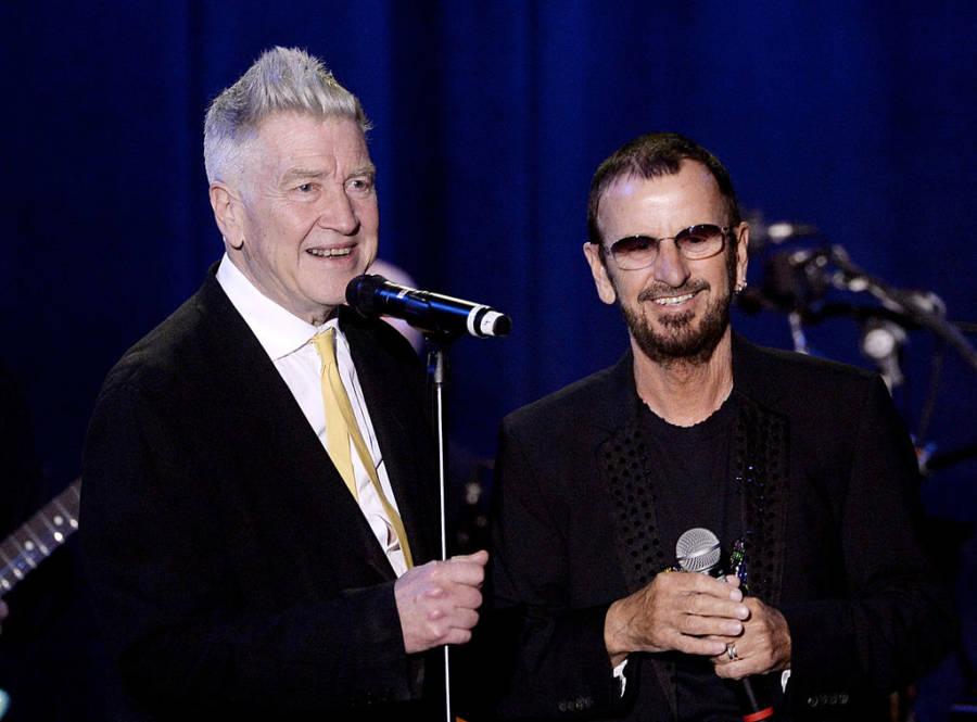 Lynch Ringo