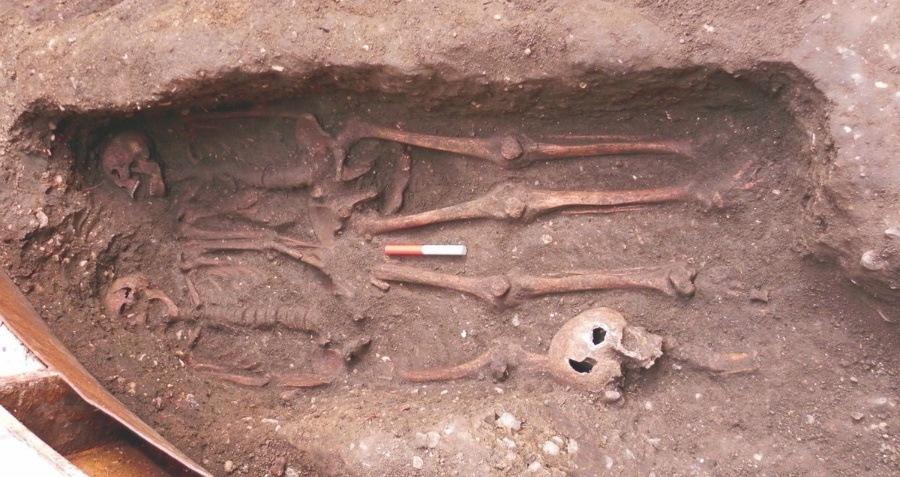 Male Skeletons Holding Hands Og