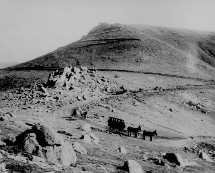 American Frontier Horses