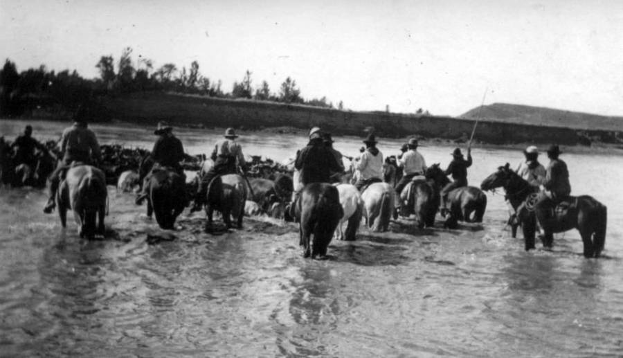 Cowboy River Crossing