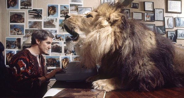 Pet Lions: Tippi Hedren's Attempt To Bring The African ...