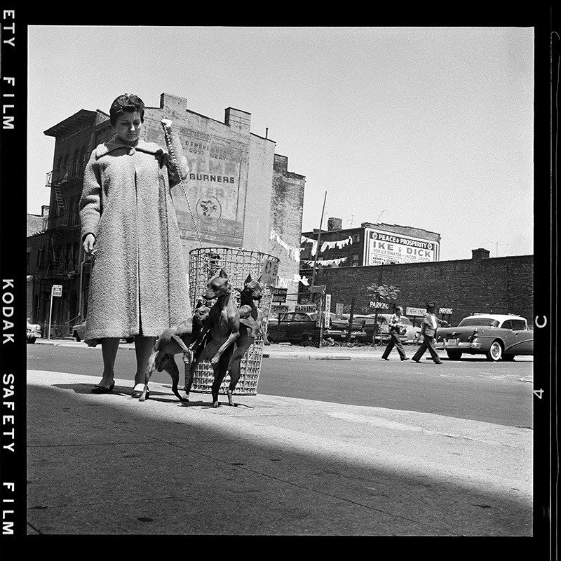 David Attie Photos Of Brooklyn