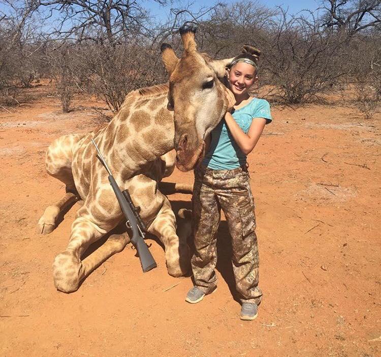 Giraffe Poaching