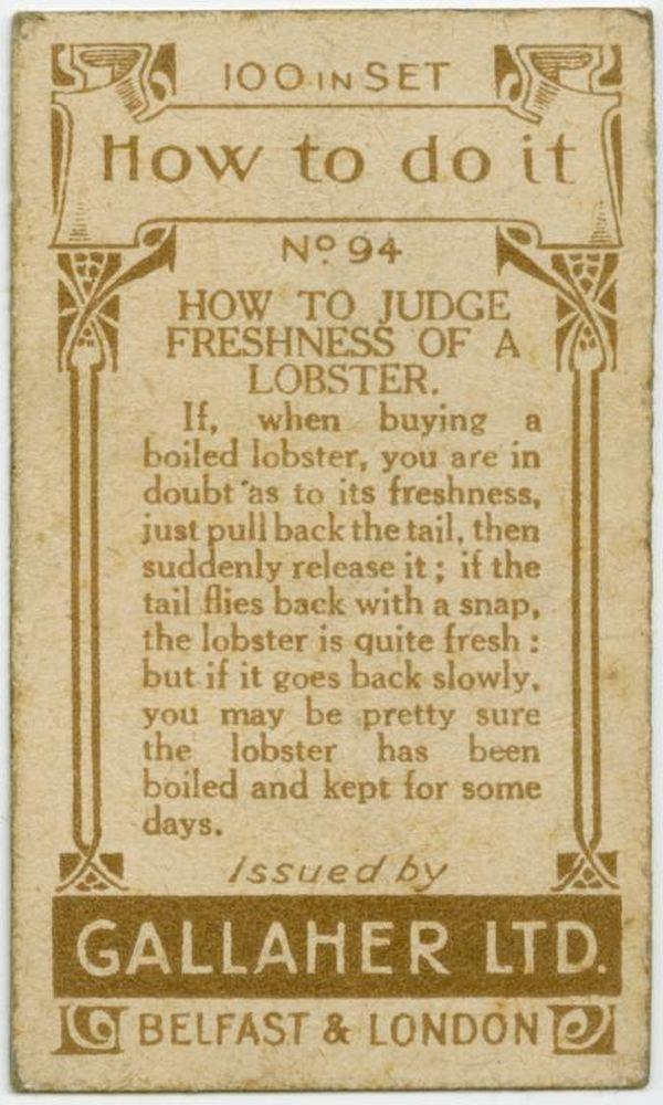 Judge Freshness Of A Lobster Back