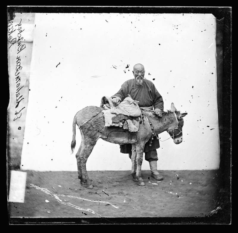 Man With Mule