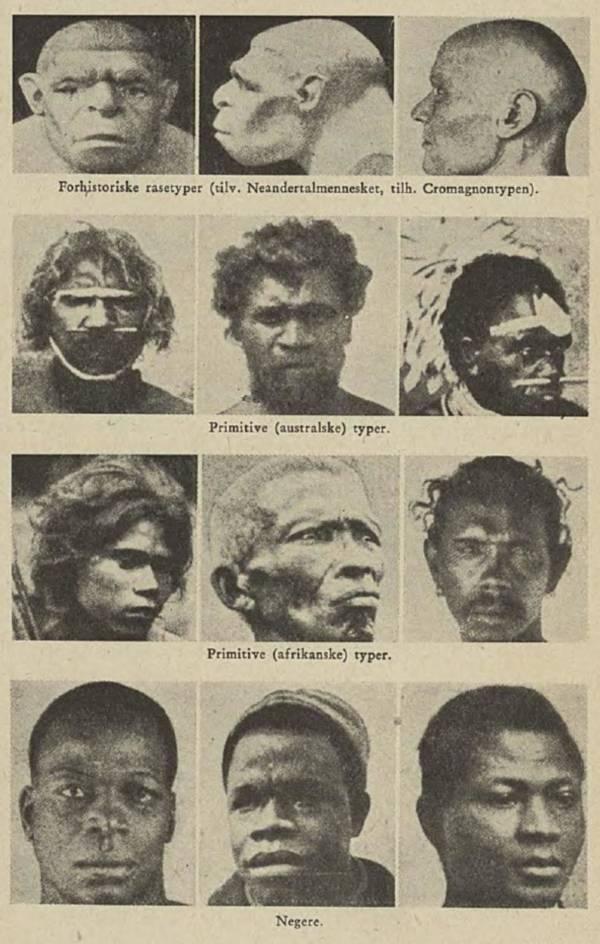 African Racial Types