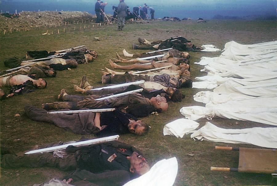 Bodies Arranged On Ground