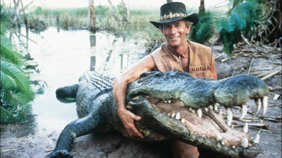 Hogan Crocodile
