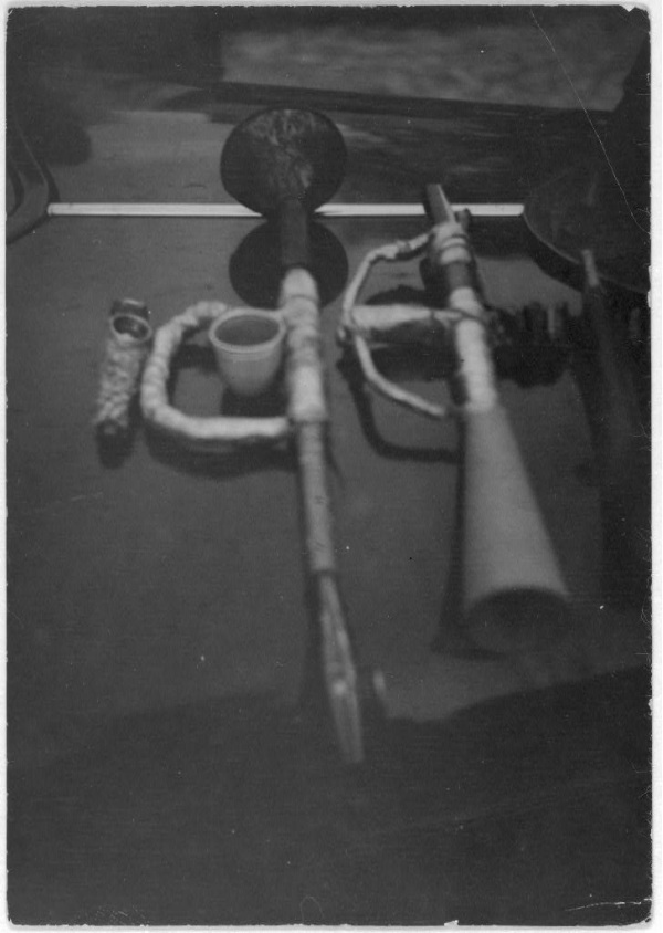 Homemade Horns
