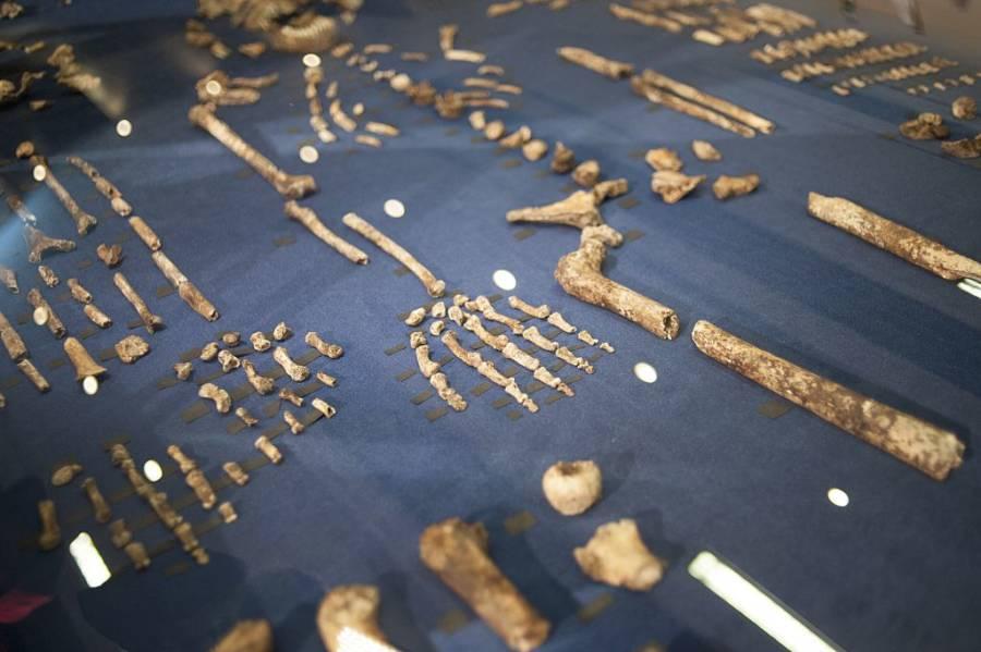 Homo Naledi Age