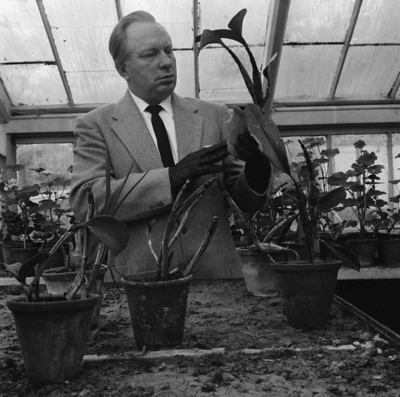 Hubbard Analyzing Plants