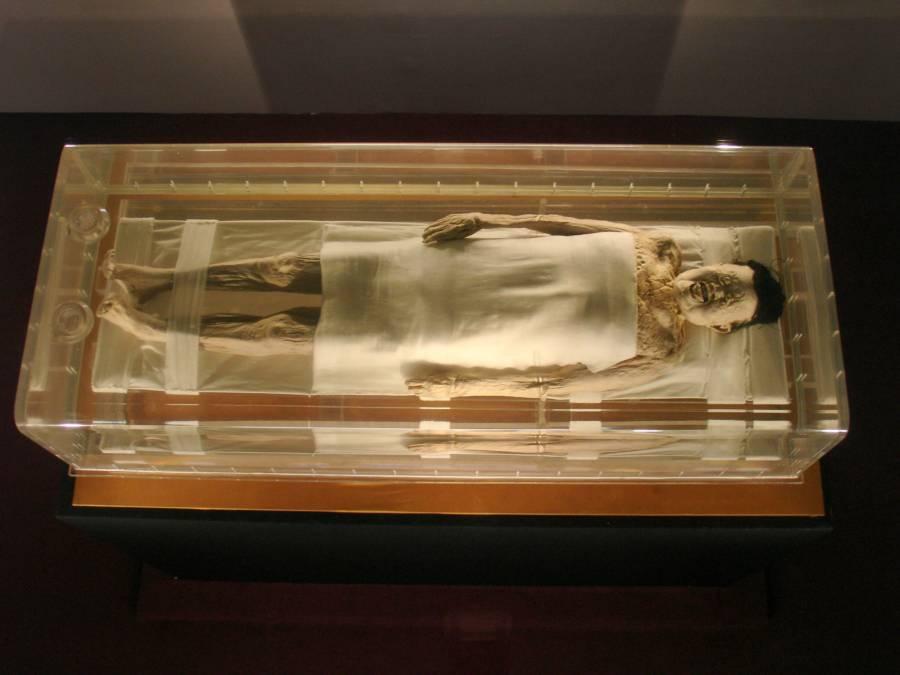Mummy Under Glass