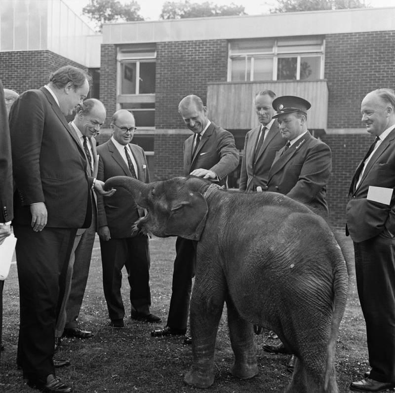 Prince Philip Elephant