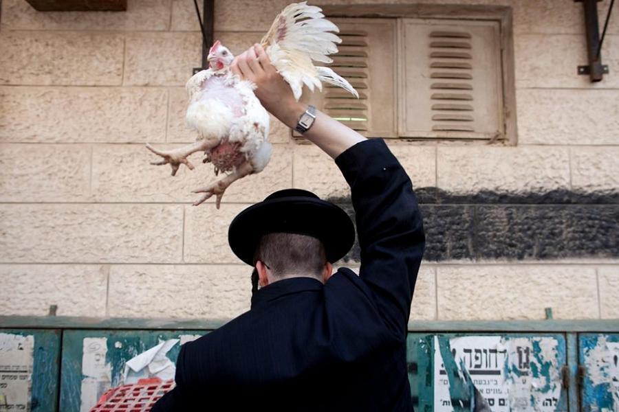 Sabbath Sin Chicken