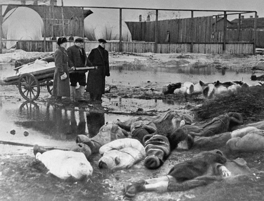 Cannibalism Leningrad Og