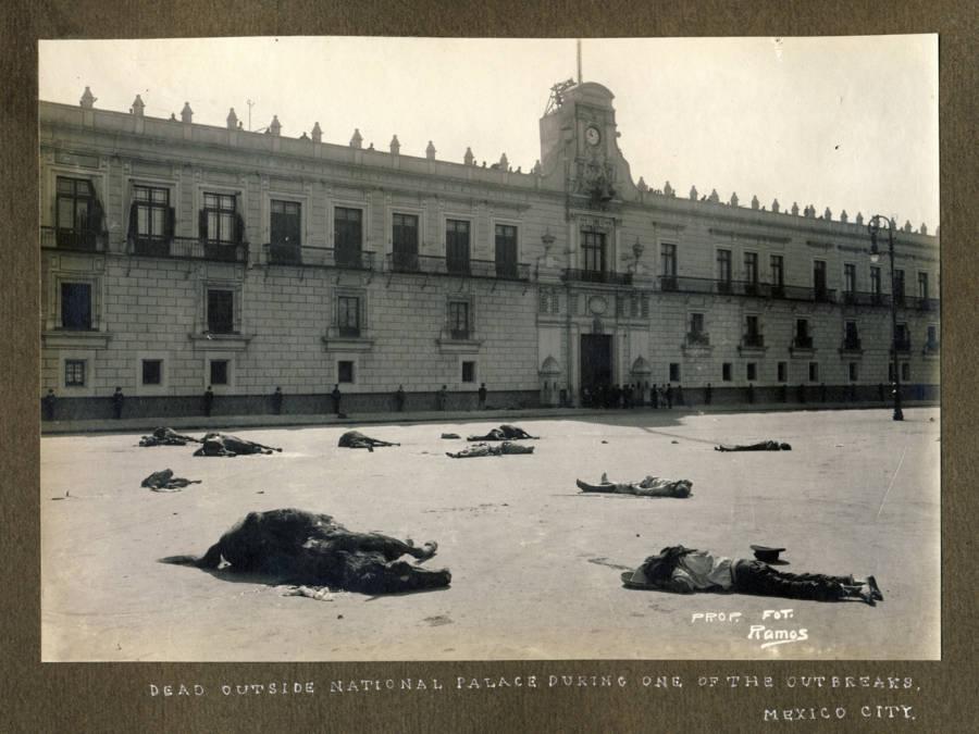Dead Outside National Palace