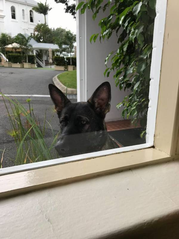 Peering Over