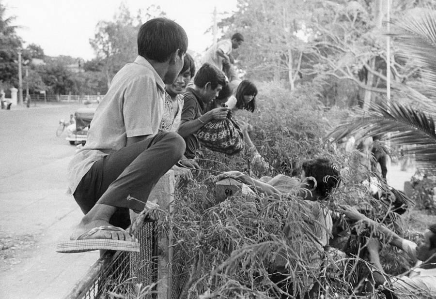 Phnom Penh Jumping Fence