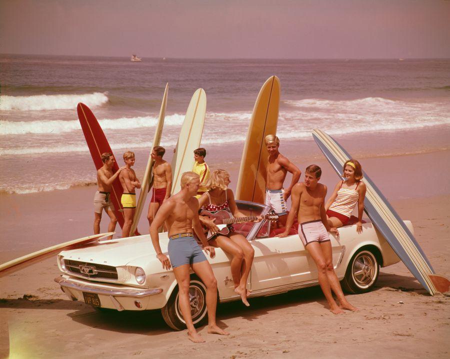 Surfboards On Display