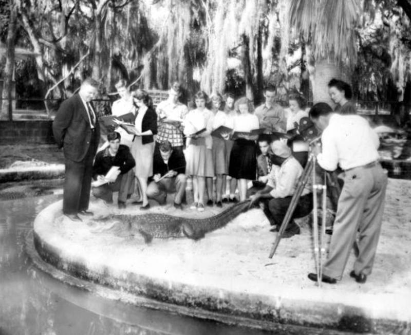 Alligator Group Photo