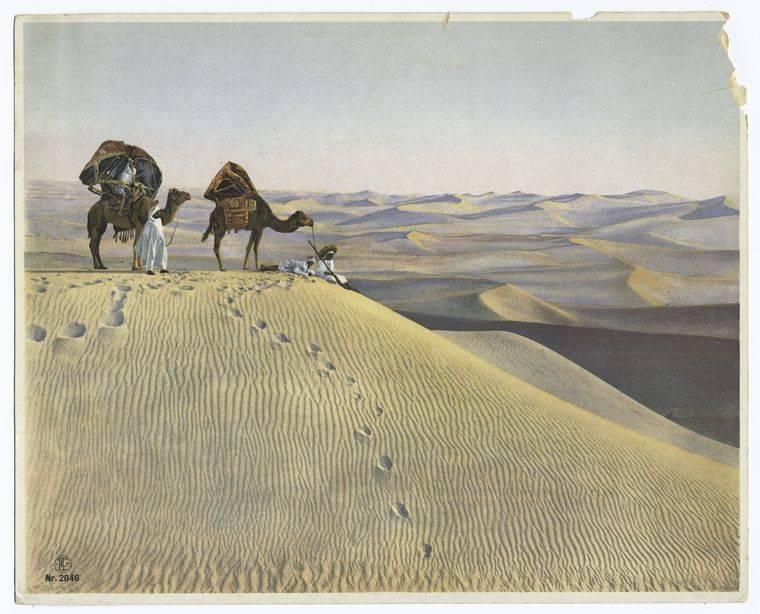 Bedouin Men In Desert
