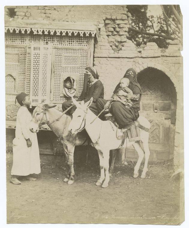 Bedouin Mothers On Donkeys