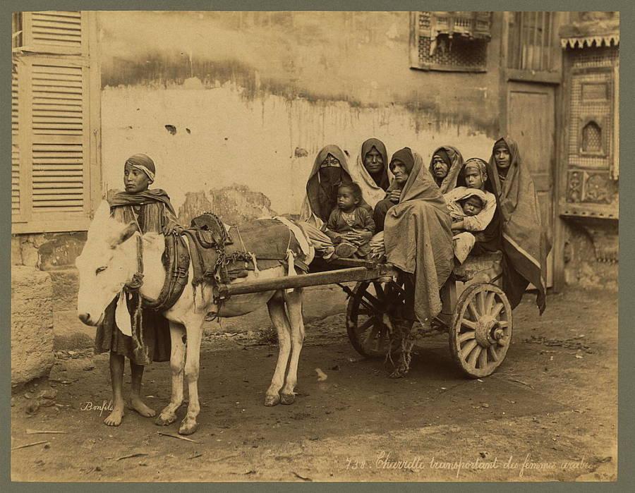 Bedouin Women On Cart