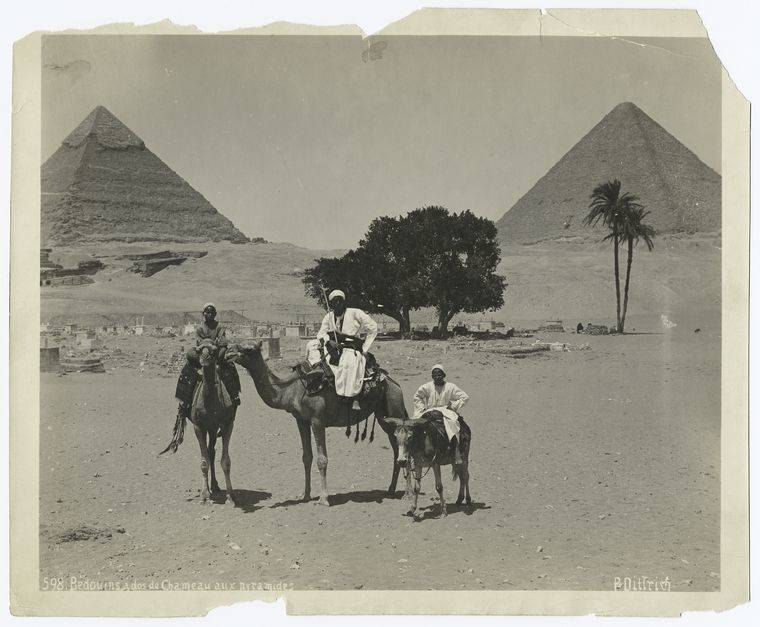 Bedouins At The Pyramids