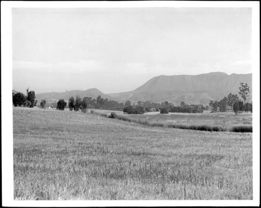 Cahuenga Pass Field