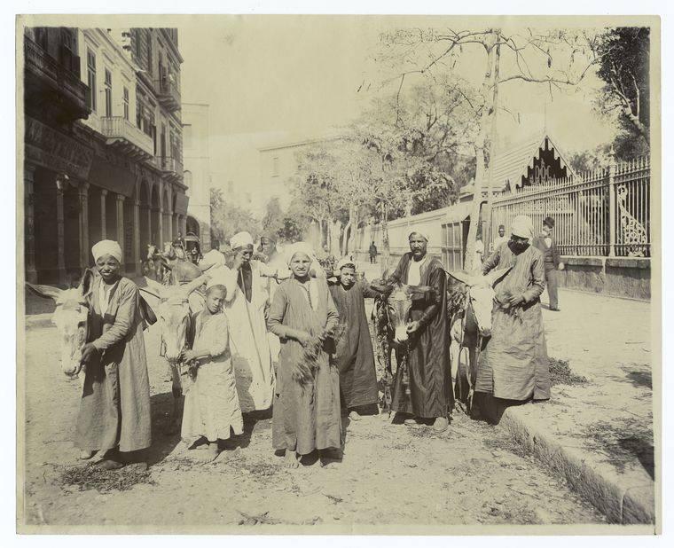 Cairo Donkey Boys