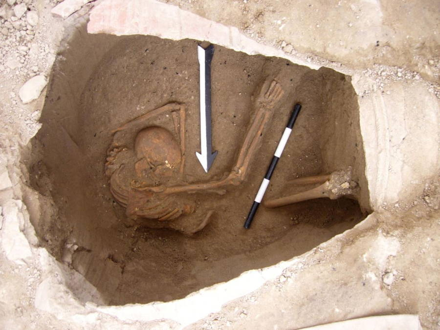 Canaanites Uncovered