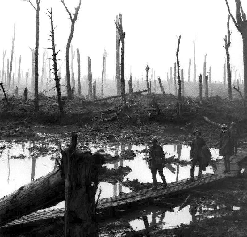 Chateau Wood Ypres Disaster