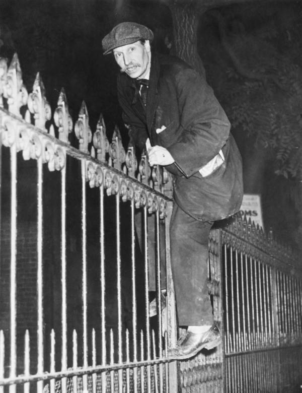 Collyer Brothers Climbing Fence