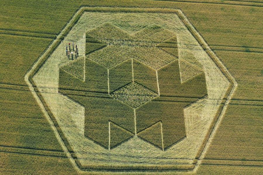 Crop Circles Plus Sign