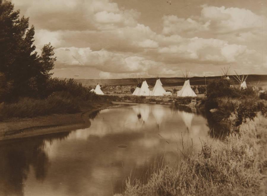 Crow Camp On Riverbank