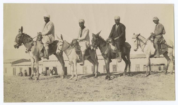 Egyptian Men On Donkeys