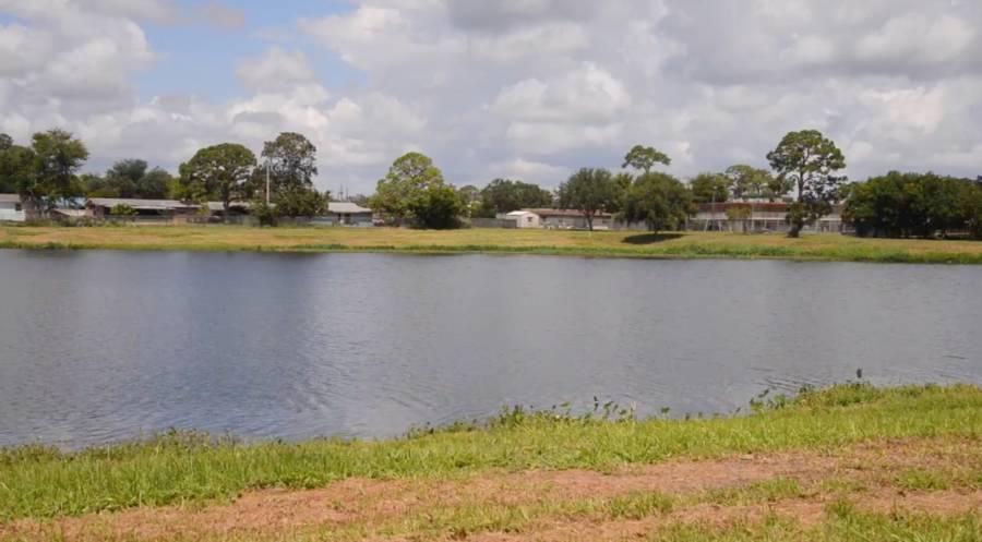 Florida Teens Pond