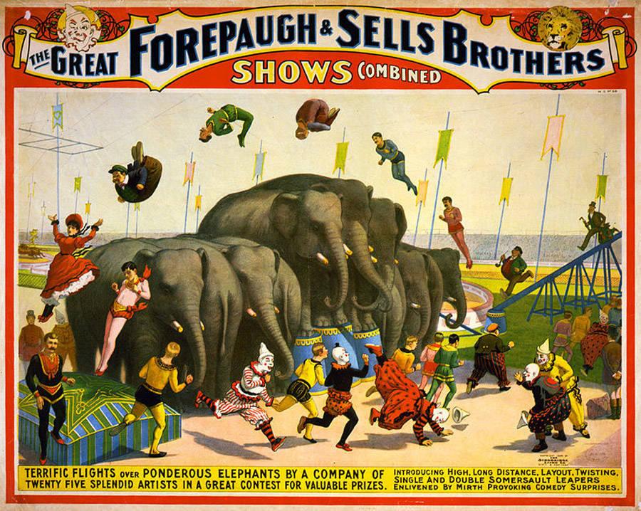 Forepaugh Sells Poster