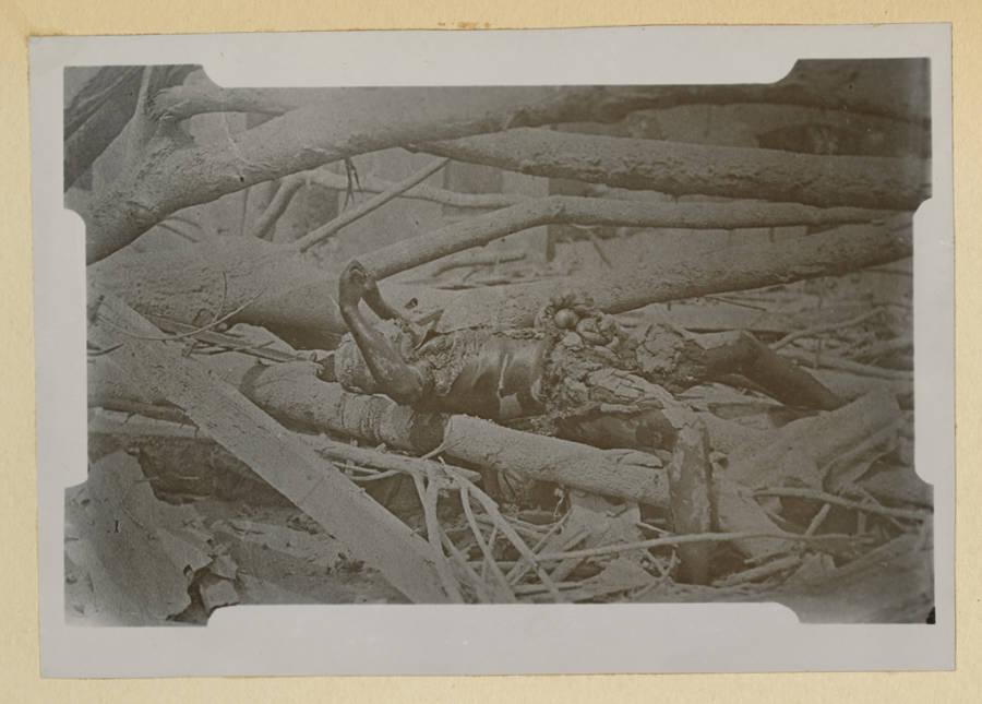Mt Pelee Burned Body