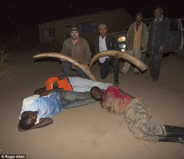Poaching Gang Arrested