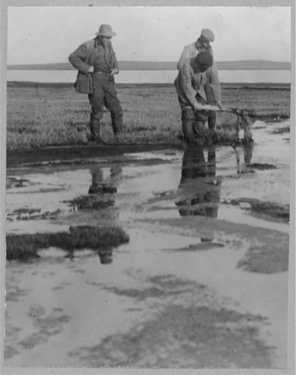 Point Barrow Petroleum Lake
