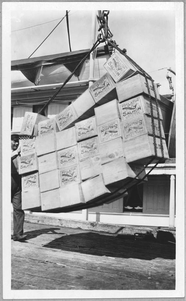 Salmon Shipment Alaska