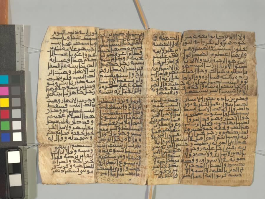 Sinai Pamphlets