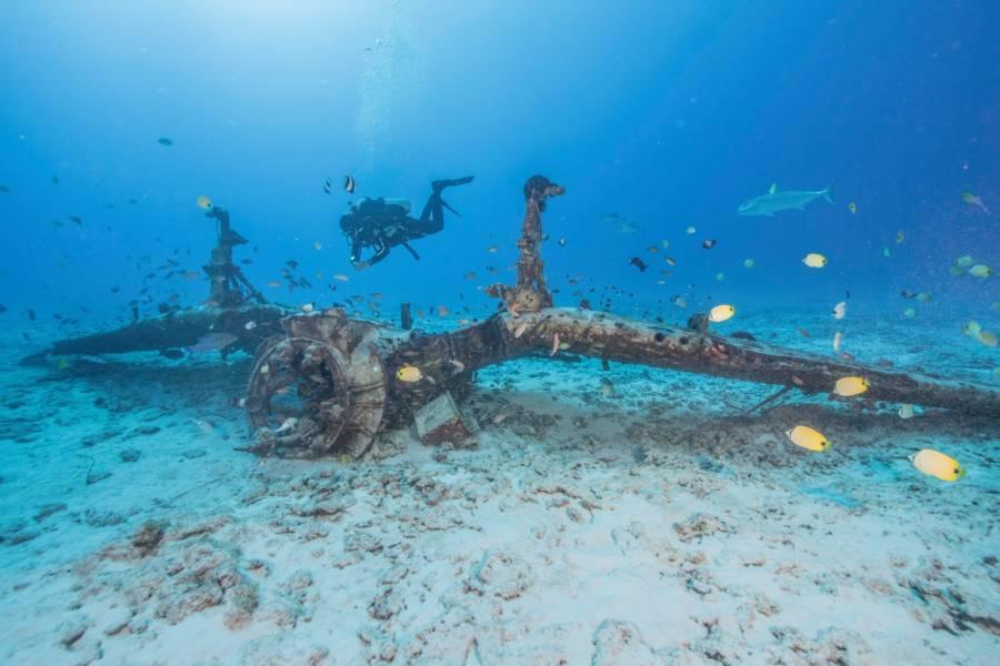 Submerged Wwii Plane