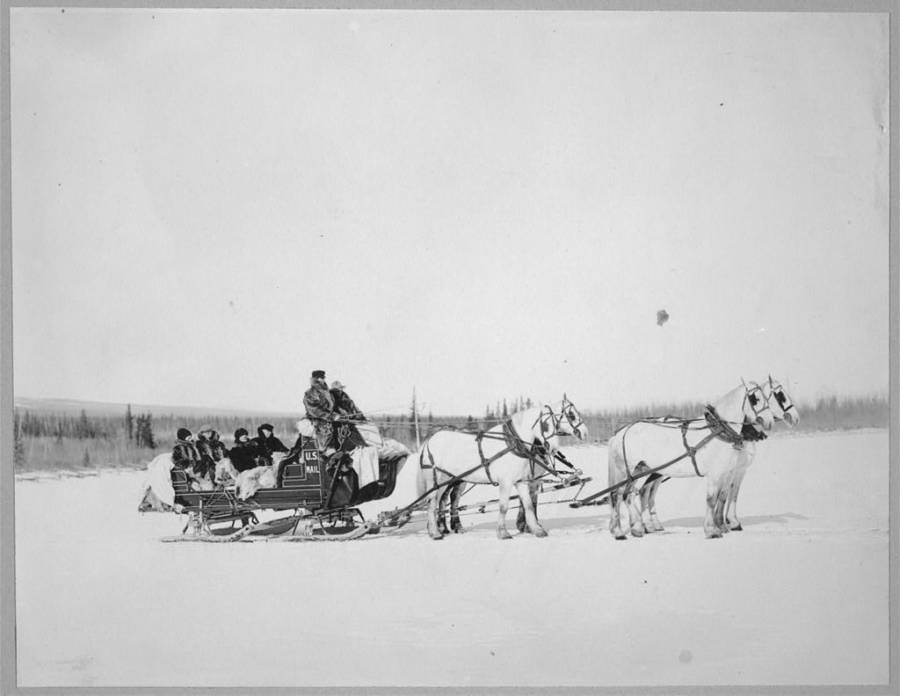 Us Mail Sled Alaska
