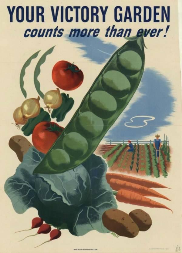 Victory Garden Vegetables