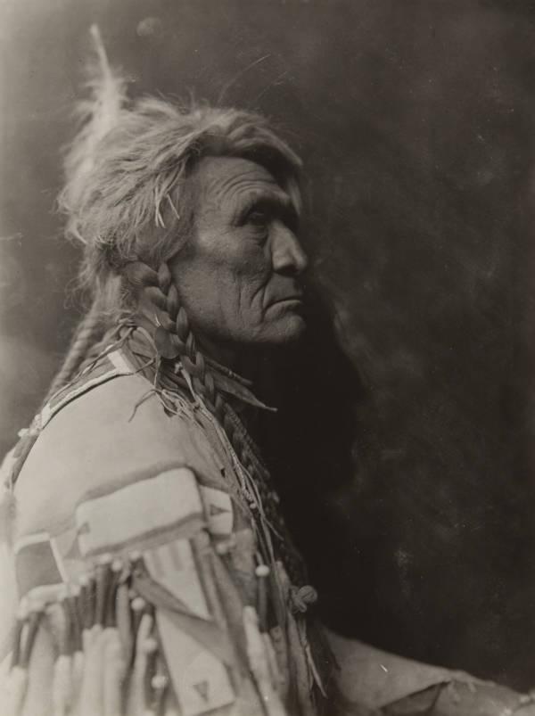 Wolf Crow Tribe